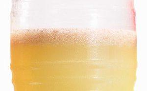 Chia-Limeade